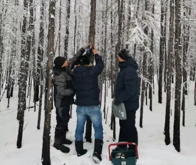 我校极地研究院师生赴俄罗斯北极